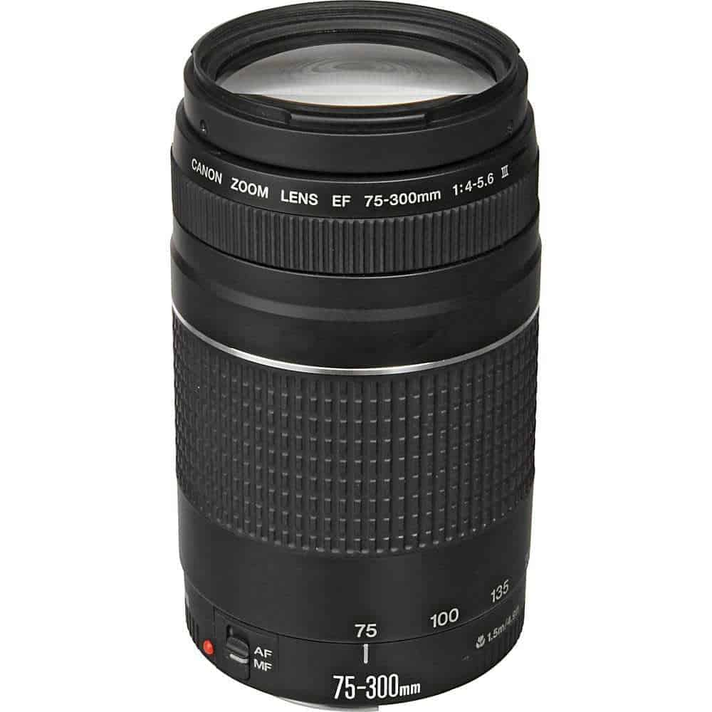 Canon EF 75 300mm f 4 5 6 III Lens 1 - Search Photo4Less