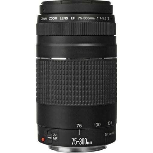 Canon EF 75 300mm f 4 5 6 III Lens 2 510x510 - Canon EF 75-300mm f/4-5.6 III Telephoto Zoom Lens for Canon SLR Cameras