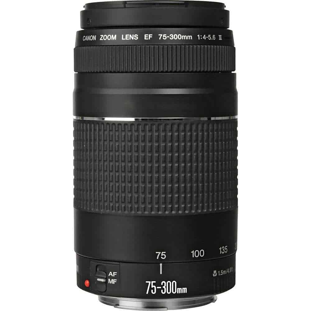 Canon EF 75 300mm f 4 5 6 III Lens 2 - Search Photo4Less